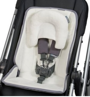 UPPAbaby Infant SnugSeat Review