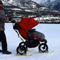 stroller ski conversion kit